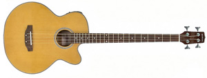 Gear4Music.com debuts Electro Acoustic Bass