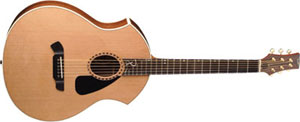 Parker Introduces New Line of Acoustic Guitars with The Intrigue Series