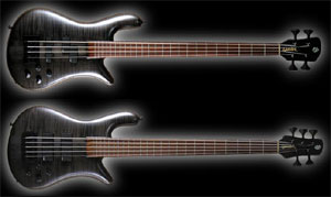 Spector Announces Forte USA Basses